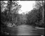"Woodstock College The Patapsco (at the ""'Fork"" Picnic Grounds) Nov. 1894"