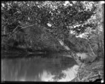 Woodstock College River at Possum Hollow (Patapsco) Oct, '94
