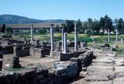 Hippo Baptistery and Consignatorium, Site Context