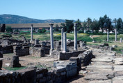 Hippo Baptistery and Consignatorium, Site Context