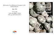 Cover for Alternative Coca Reduction Strategies in the Andean Region